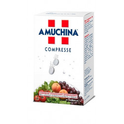 Amuchina 24 Compresse Effervescenti 1 Gr.