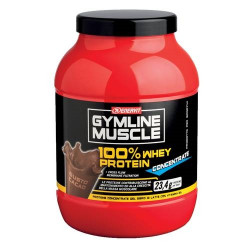 Enervit 100% Whey Protein Cacao 700 Gr