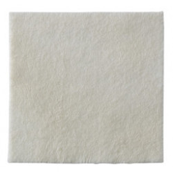 Biatain Alginate 10x10 Cm 10 Pezzi
