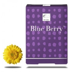 Blue Berry 120 Compresse 2 Pezzi