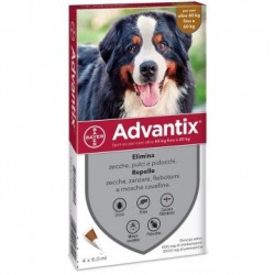 Advantix spot on 4 pipette 6 ml cani da 40 a 60 kg