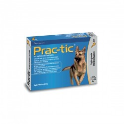 Practic 3 Pipette 625mg 5ml Cani Grandi