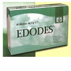 Edodes 16 Buste